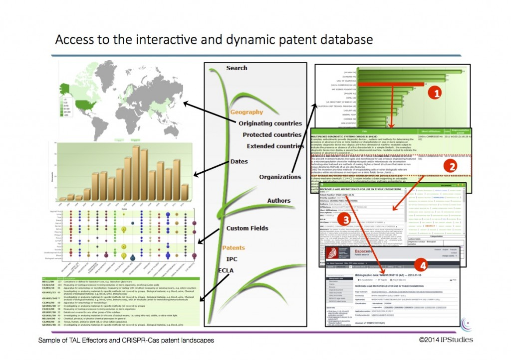 interactivedatabase